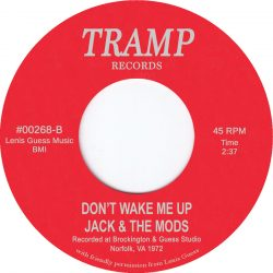 Dont Wake Me Up - Jack The Mods