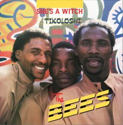 The Bees – She's A Witch - Tikoloshi