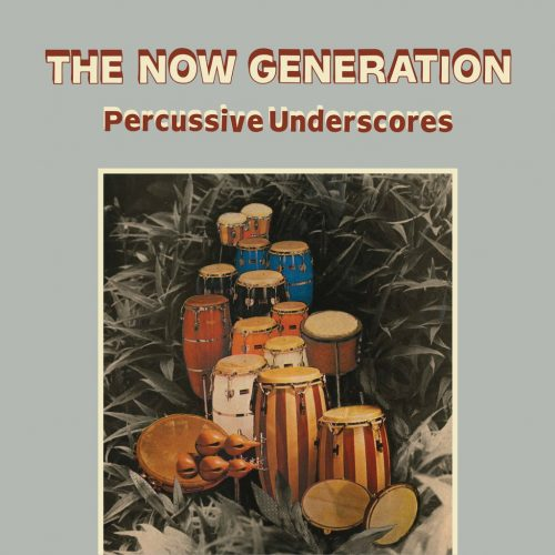 Peter Lüdemann / Pit Troja ‎– The Now Generation (Percussive Underscores)