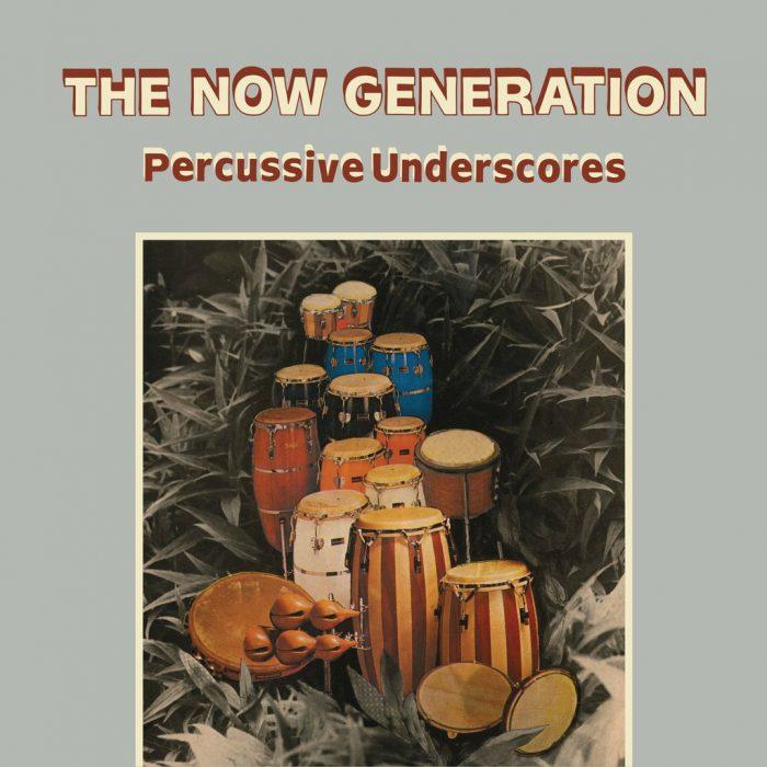 Peter Lüdemann / Pit Troja – The Now Generation (Percussive Underscores)