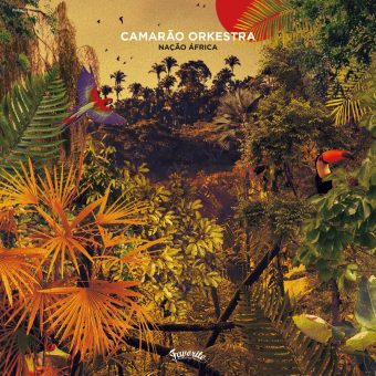 Camarão Orkestra - Nação África