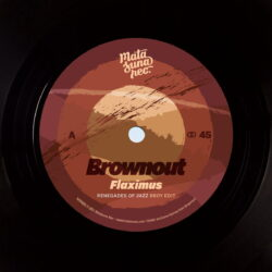Renegades-Of-Jazz-Remixes-Brownout-Jungle-Fire.jpg