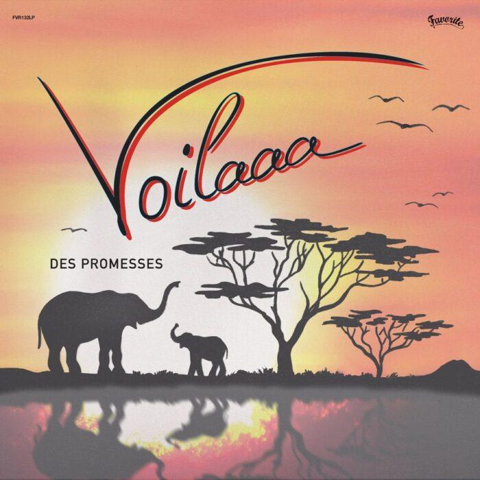 Voilaaa_Des_Promesses