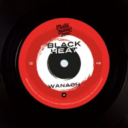 Wanaoh-Chips-Funk-Black-Heat